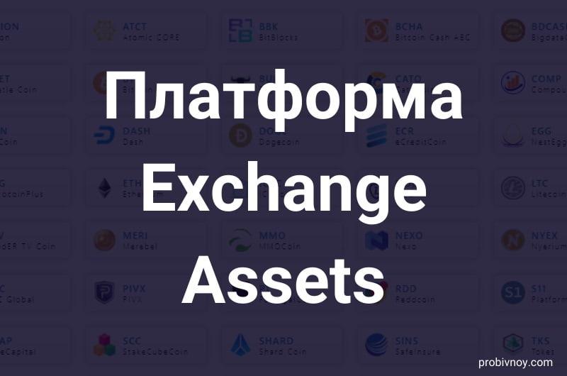 ExchangeAssets (Exchange-assets com) – обзор и отзывы о криптовалютной платформе
